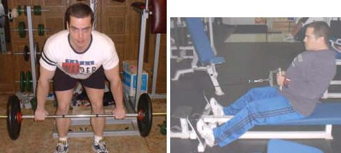 Bent Over Barbell Row & Seated Cable Row
