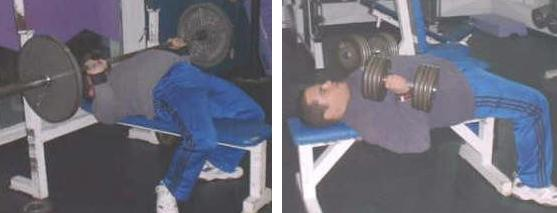 Barbell Bench Press & Dumbbell Bench Press