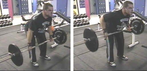 Bent Over Barbell Row Picture