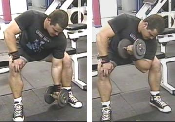 dumbell concentration curls