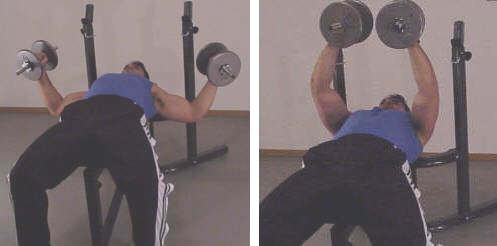 dumbbell flye picture