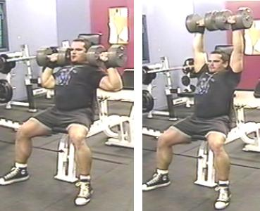 seated dumbbell shoulder press