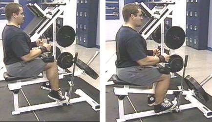 seated calf raise picture