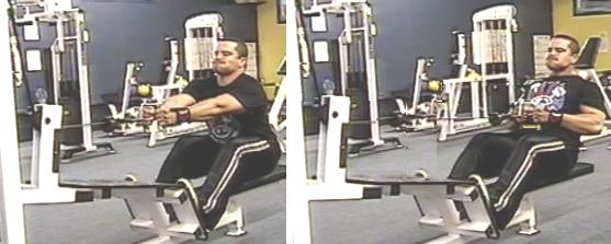 Seated Cable Row Picture